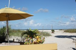 barbecue pit, seating, showers and the Gulf of Mexico
