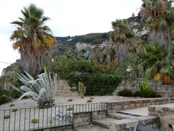 Mossen Costa i Llobera Gardens