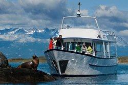 Patagonia Adventure Explorer