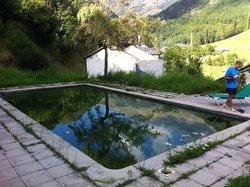 El agua de la piscina verde un 30 de agosto.
