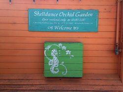 Shelldance Orchid Gardens