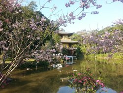 Templo Kinkaku-Ji Do Brasil
