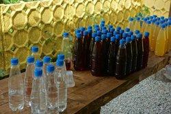 Bee Garden Honey Yard