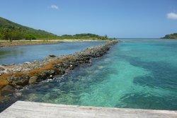 Pelican Beach Excursions