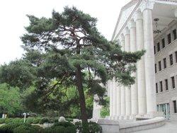 Yonsei University Museum