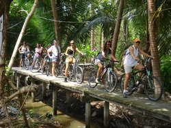 Follow Me Bike Tours