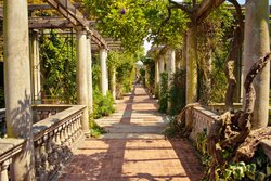 Hill Garden & Pergola
