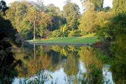 Kungliga botaniska trädgården i Melbourne