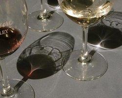 Obsidian Wine Tours