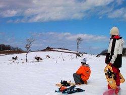 Starhours Shiretoko Nature Experience - Daytours