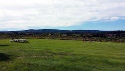 Loudoun Valley Vineyards