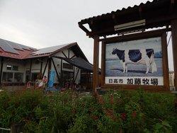 Kato Bokujo Baffi Hidaka Main Shop