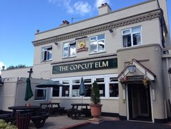 The Copcut Elm