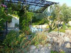 The lovely gardens