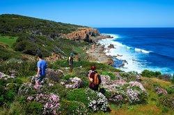 Cape to Cape Walking Trail (110167989)