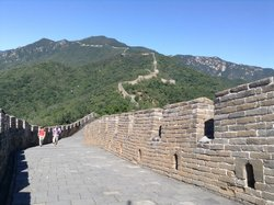 Enjoy Leo's Tour Beijing Guide& Driver service