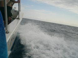 Corail Plongee