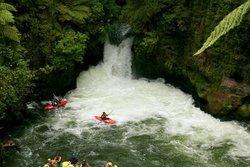 Kaituna Kayaks
