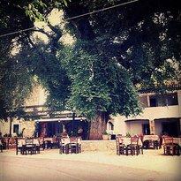 Oasis Taverna Strinilas