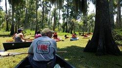 Wild Louisiana Tours - Day Tours