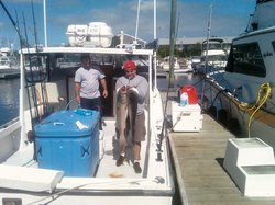 Shark Shark Tuna Fishing Charters