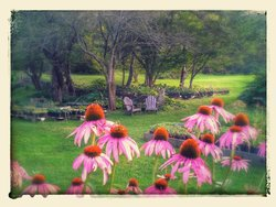 Cider Hill Gardens