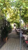 Zipf's Wein- und Gasthof Steuer