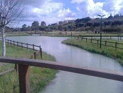 Parco Urbano del Cillarese