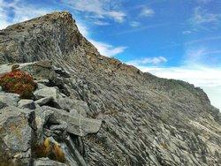 Let's Climb Mount Kinabalu