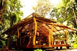 Congo Bongo Boutique Guest Houses