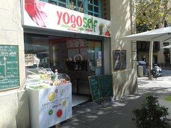 Yogo Self Frozen Yogurt
