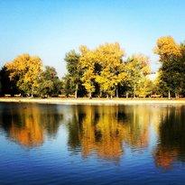 Terletskiy Park