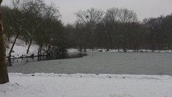 L'étang de Trivaux sous la neige