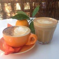 The Orange Tree Tapas Bar