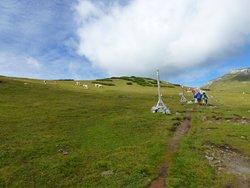 Mt. Schneeberg