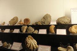 Museo Diocesà de Menorca