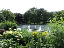 Must See Central Park- Day Tours