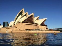 OzPaddle Sydney