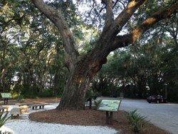 Mitchelville Freedom Park