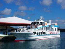 Azama Boat Shelter