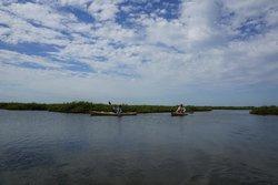 Coastal Bend Kayak