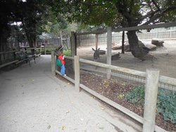 Applegate Park Zoo