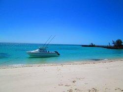 Paradise Island snorkeling trip