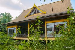 Jungle House, Vientiane Laos