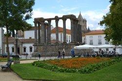 Ibis Evora
