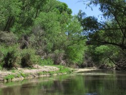 Gila Box Riparian National Conservation Area