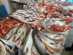 pescheria gastronomica bluefisc