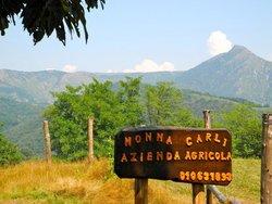 Nonna Carli - Azienda Agricola del Passo del Turchino
