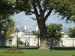 Süleymaniye-Moschee mit weitläufigem Park