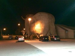 The Big Merino